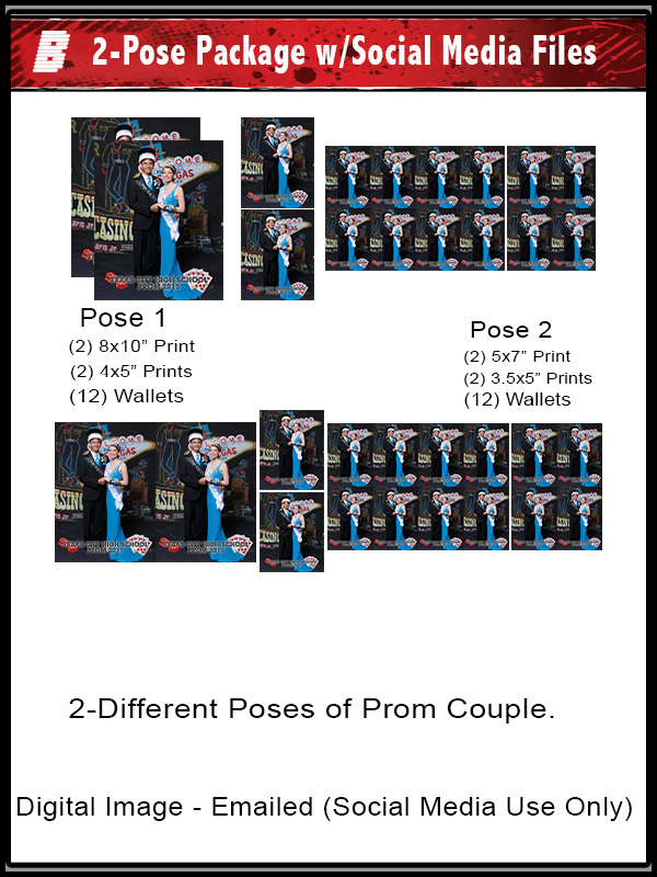 PACKAGE B 2-POSE PROM